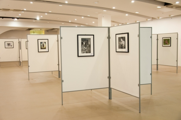 The Royal Photographic Societys' biennial collection